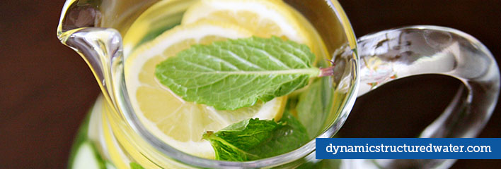 Detoxification through Structured Water